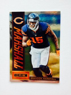 2013 Panini R&S Longevity  Brandon Marshall