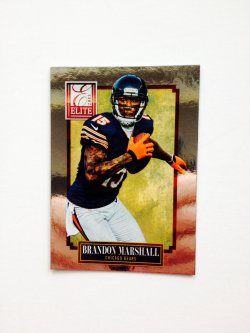 2013 Panini Elite Brandon Marshall