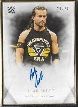 2019 Topps WWE Transcendent Collection Adam Cole #ed 21/25