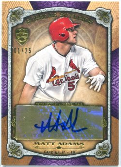 2013 Topps Supreme Stylings Auto Matt Adams