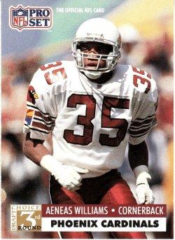 1991 Williams