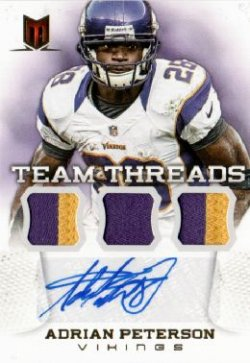 2013  Momentum Adrian Peterson Auto Patch